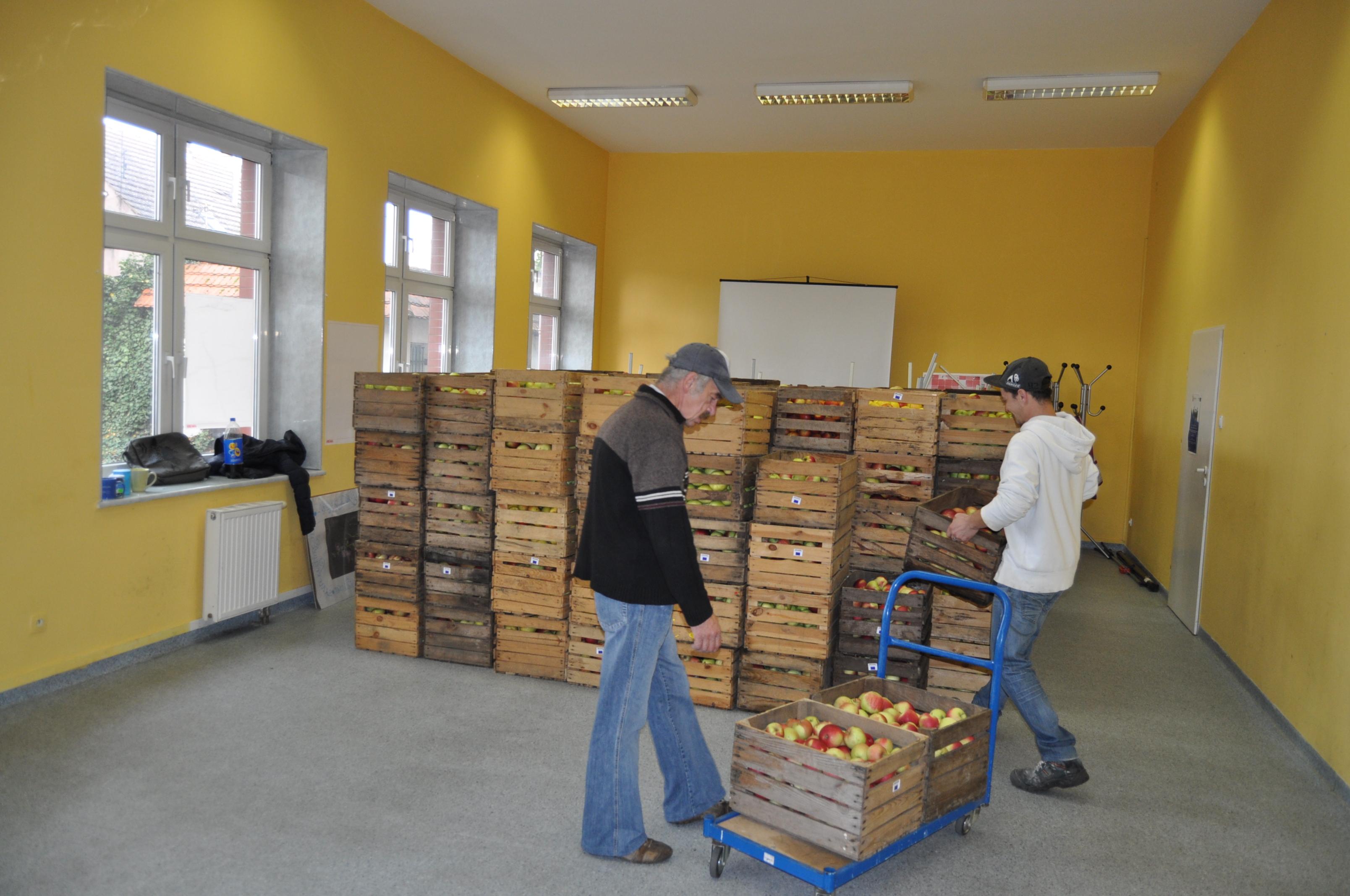 Ilustracja do informacji: Jabłka dla jednostek organizacyjnych...